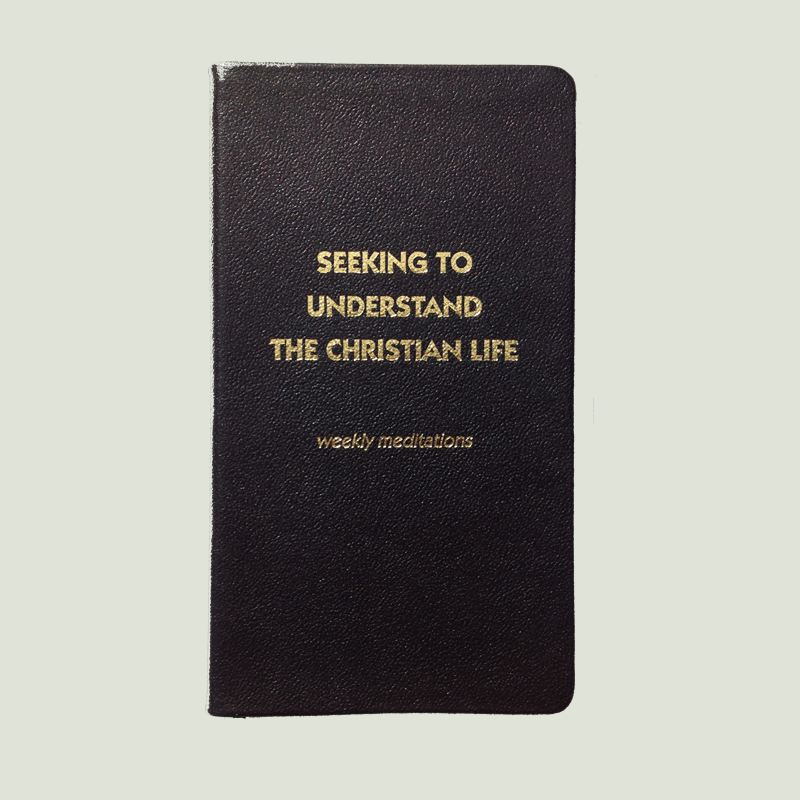 Seeking to Understand the Christian Life – Black Leather Cover